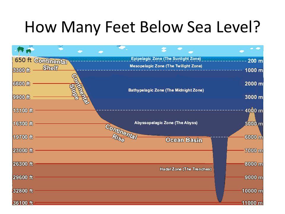 How Many Feet Below Sea Level 650 ft