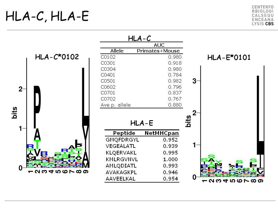 HLA-C, HLA-E HLA-C*0102 HLA-E*0101 HLA-E HLA-C