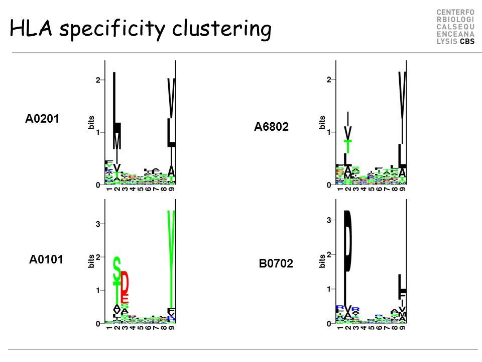 Logos of HLA-A alleles O Lund et al., Immunogenetics. 2004 55:797-810 A2 supertype