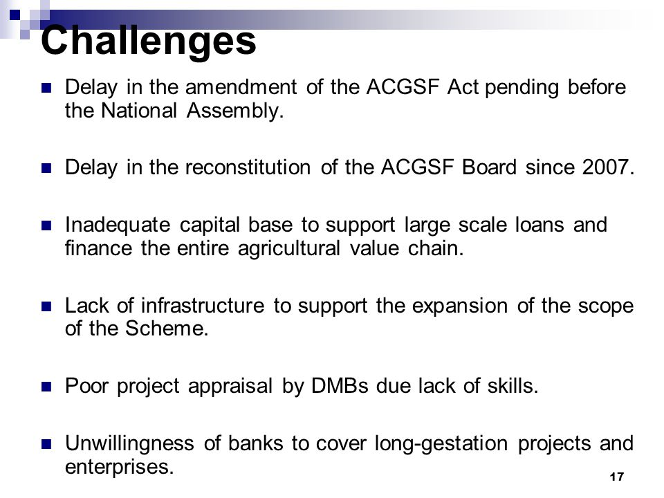Challenges Delay in the amendment of the ACGSF Act pending before the National Assembly. Delay in the reconstitution of the ACGSF Board since 2007. In