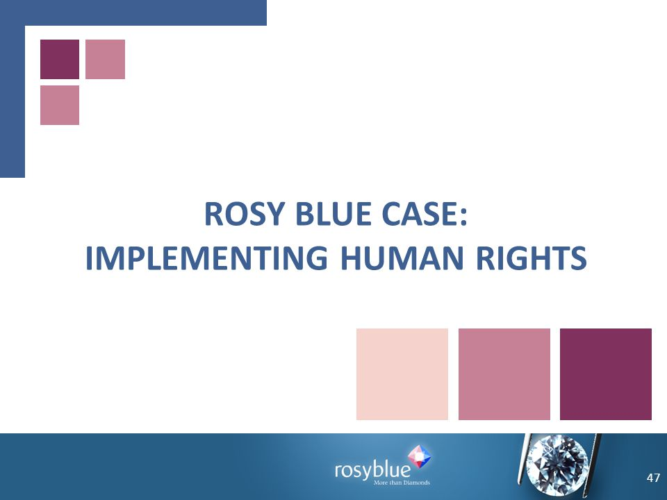 ROSY BLUE CASE: IMPLEMENTING HUMAN RIGHTS 47
