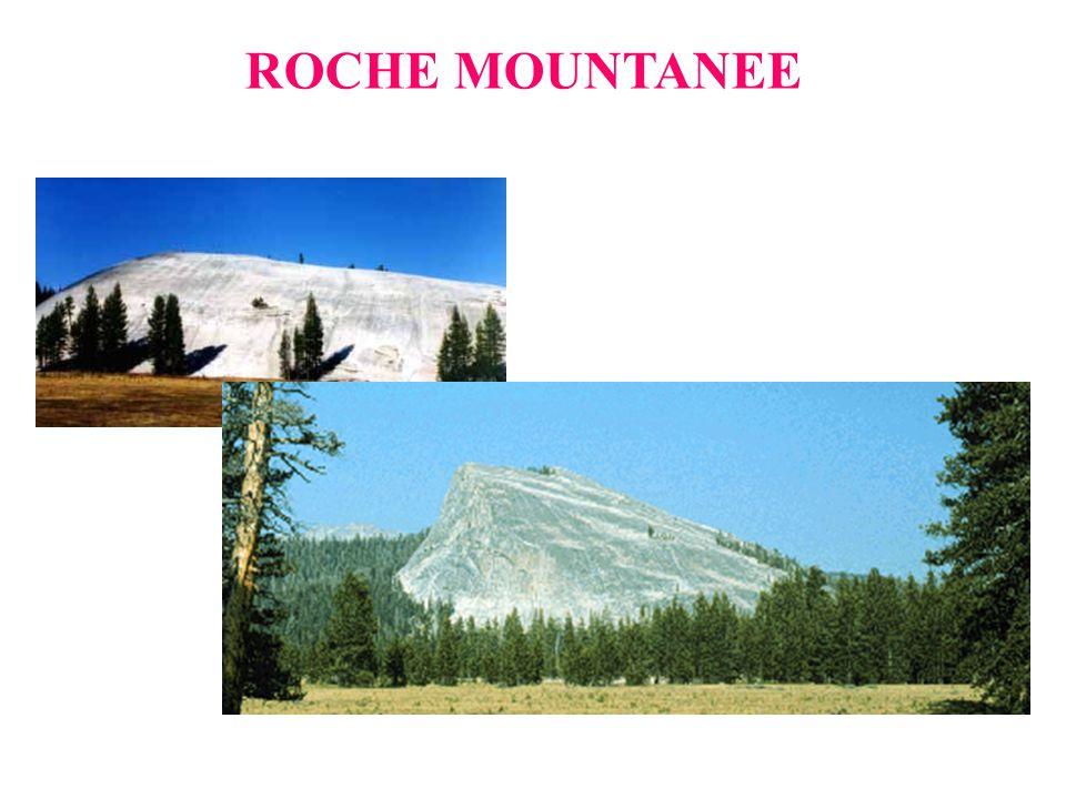 ROCHE MOUNTANEE