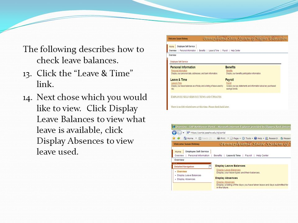 View of Display leave Balances