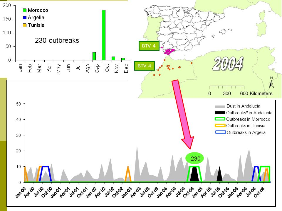 Dust in Andalucía Outbreaks* in Andalucía Outbreaks in Tunisia Outbreaks in Argelia Outbreaks in Morrocco BTV-4 BTV introduction in Andalucía *Only primary outbreaks in Andalucía are considered 230 230 outbreaks