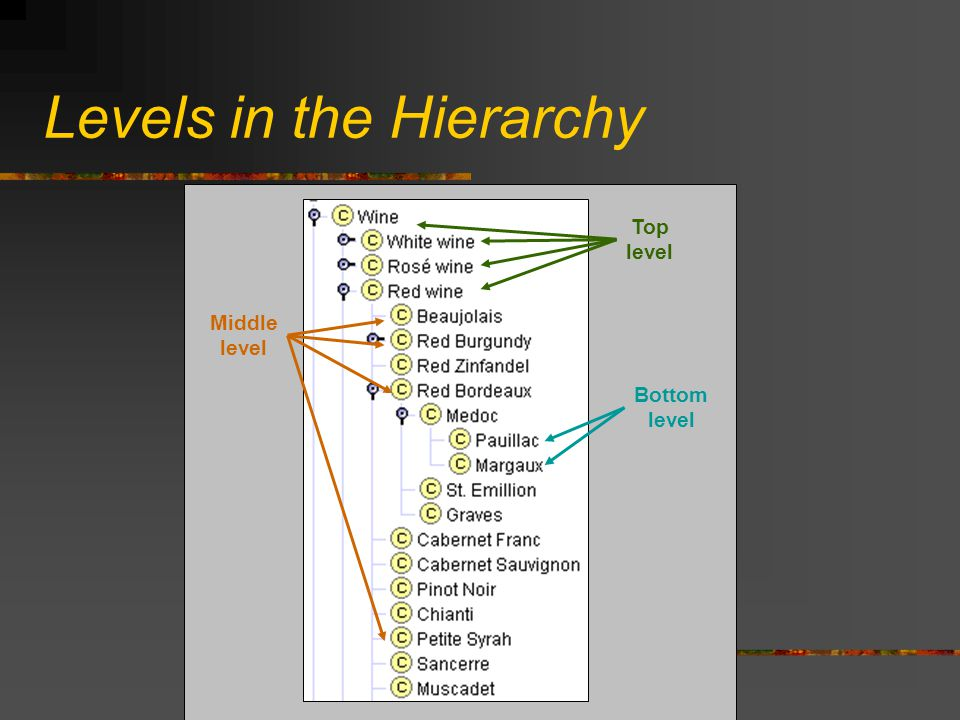 Levels in the Hierarchy Middle level Top level Bottom level