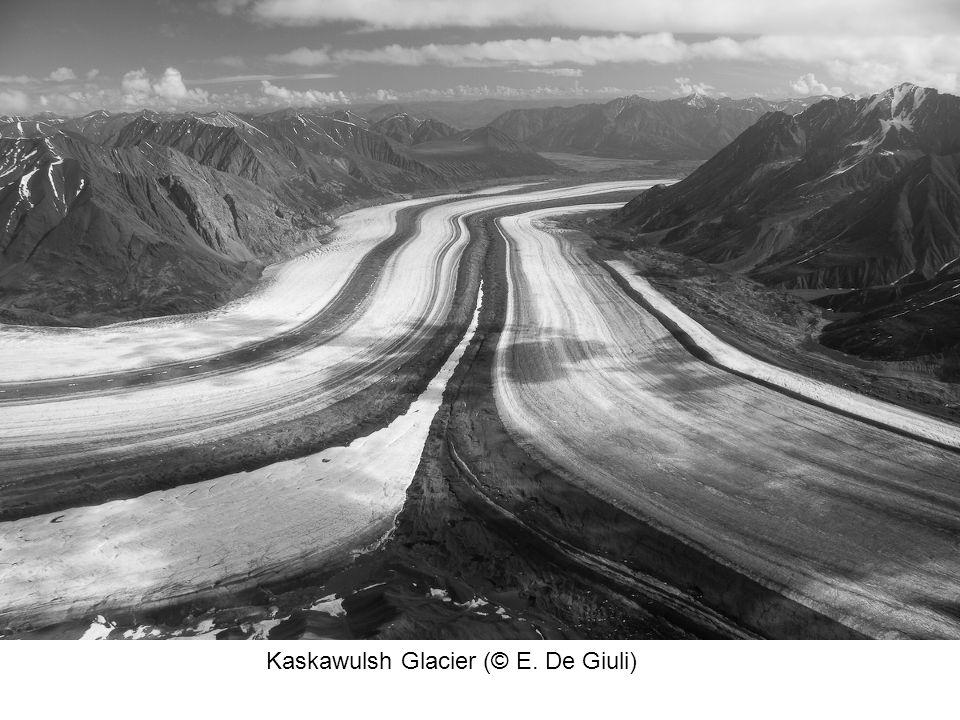 Kaskawulsh Glacier (© E. De Giuli)