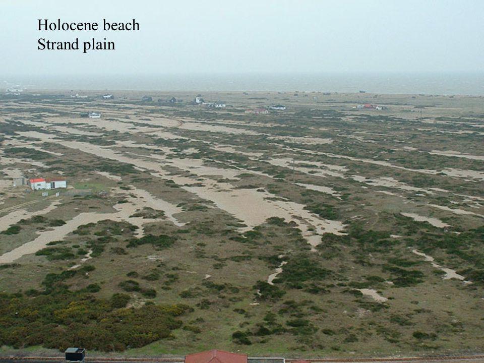 Holocene beach Strand plain