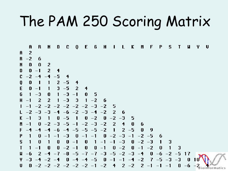The PAM 250 Scoring Matrix