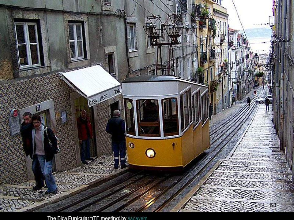 A famous tram by apazevedoapazevedo 67