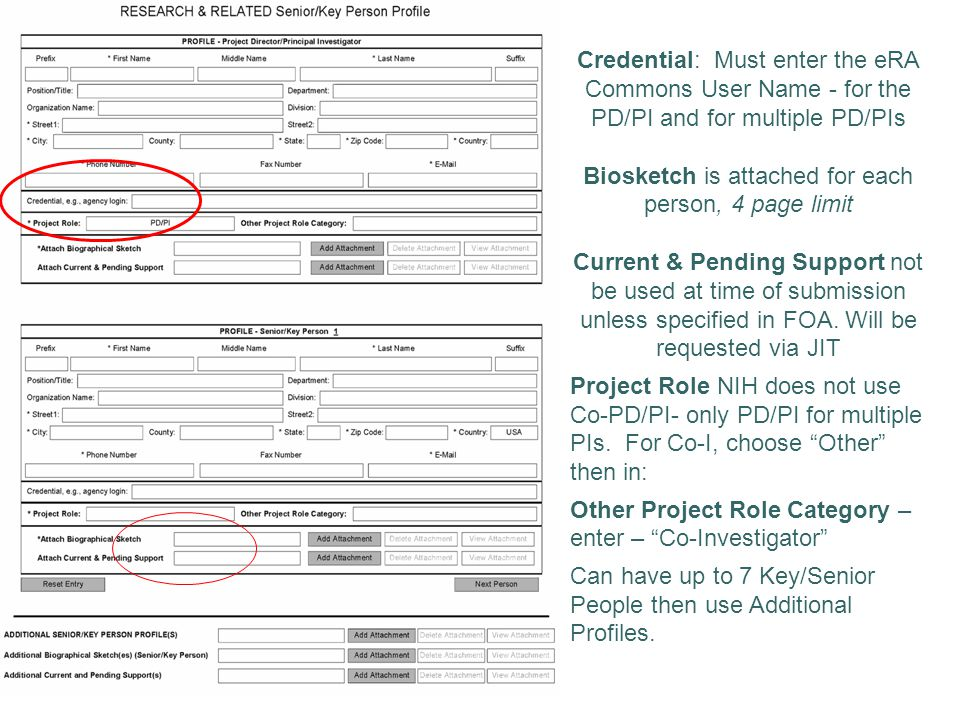 Credential: Must enter the eRA Commons User Name - for the PD/PI and for multiple PD/PIs Biosketch is attached for each person, 4 page limit Current & Pending Support not be used at time of submission unless specified in FOA.