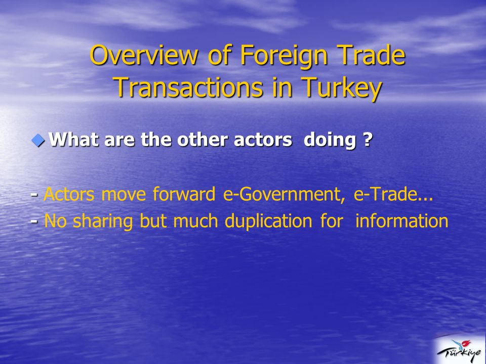  What are the other actors doing . - - Actors move forward e-Government, e-Trade...