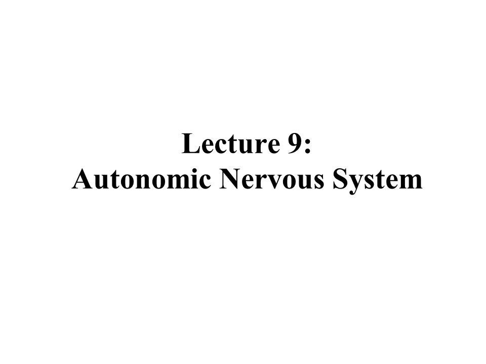 Lecture 9: Autonomic Nervous System