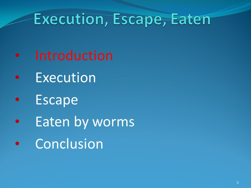 Introduction Execution Escape Eaten by worms Conclusion 24