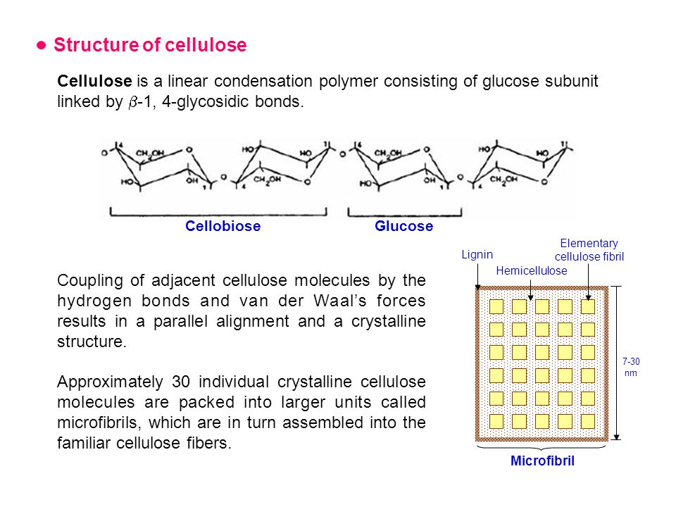 Structure of cellulose Cellulose is a linear condensation polymer consisting of glucose subunit linked by  -1, 4-glycosidic bonds.