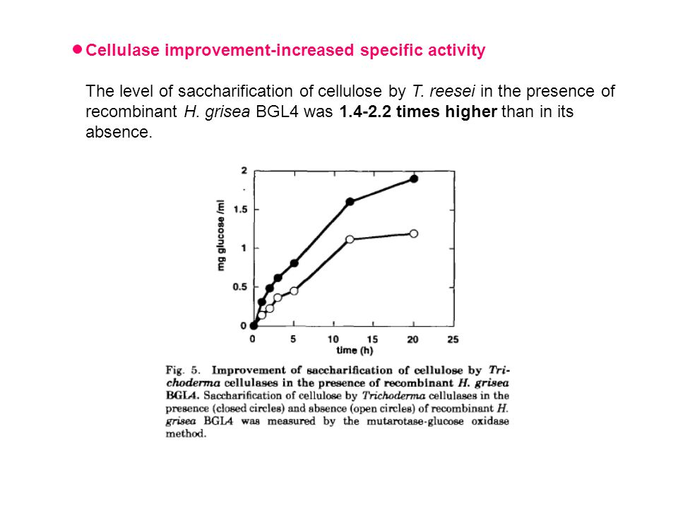 The level of saccharification of cellulose by T. reesei in the presence of recombinant H.