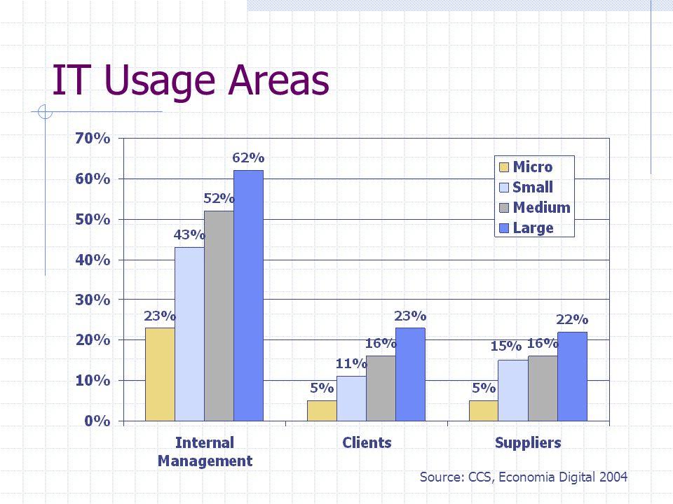 IT Usage Areas Source: CCS, Economia Digital 2004