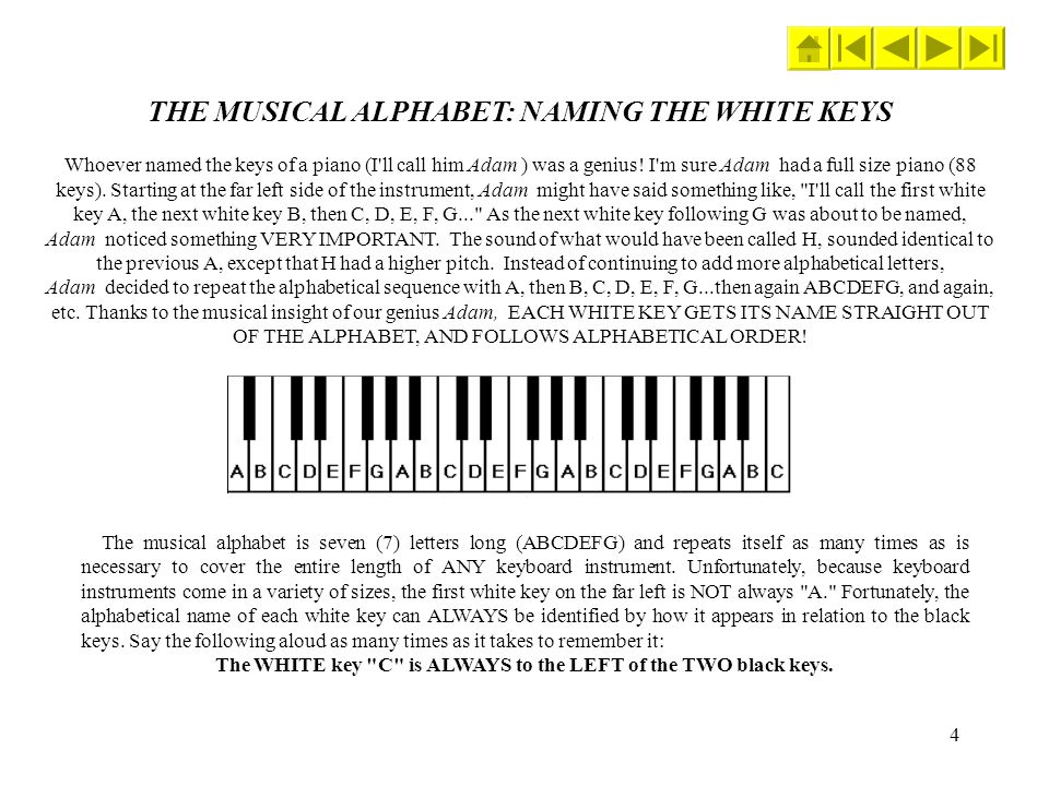 4 THE MUSICAL ALPHABET: NAMING THE WHITE KEYS Whoever named the keys of a piano (I'll call him Adam ) was a genius! I'm sure Adam had a full size pian