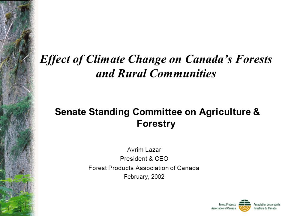 Effect of Climate Change on Canada's Forests and Rural Communities Senate Standing Committee on Agriculture & Forestry Avrim Lazar President & CEO Forest Products Association of Canada February, 2002