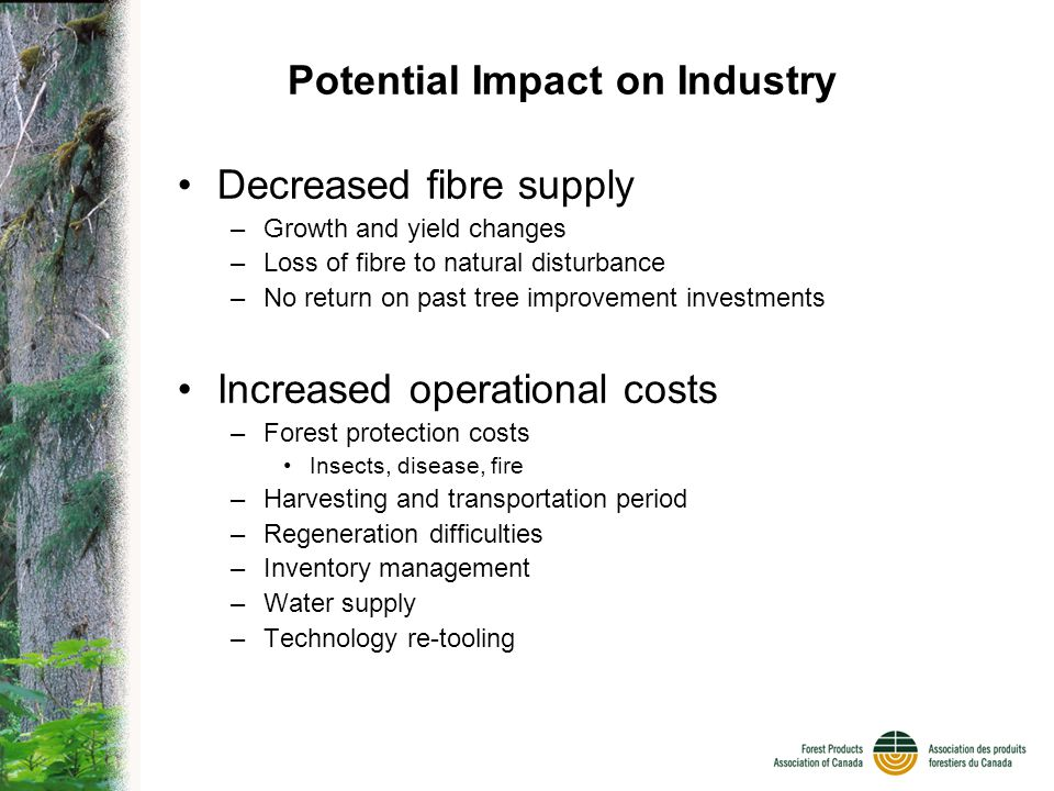 Potential Impact on Industry Decreased fibre supply –Growth and yield changes –Loss of fibre to natural disturbance –No return on past tree improvement investments Increased operational costs –Forest protection costs Insects, disease, fire –Harvesting and transportation period –Regeneration difficulties –Inventory management –Water supply –Technology re-tooling