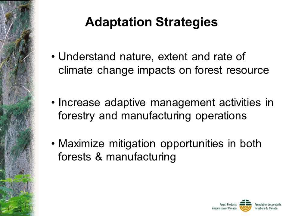 Adaptation Strategies Understand nature, extent and rate of climate change impacts on forest resource Increase adaptive management activities in forestry and manufacturing operations Maximize mitigation opportunities in both forests & manufacturing