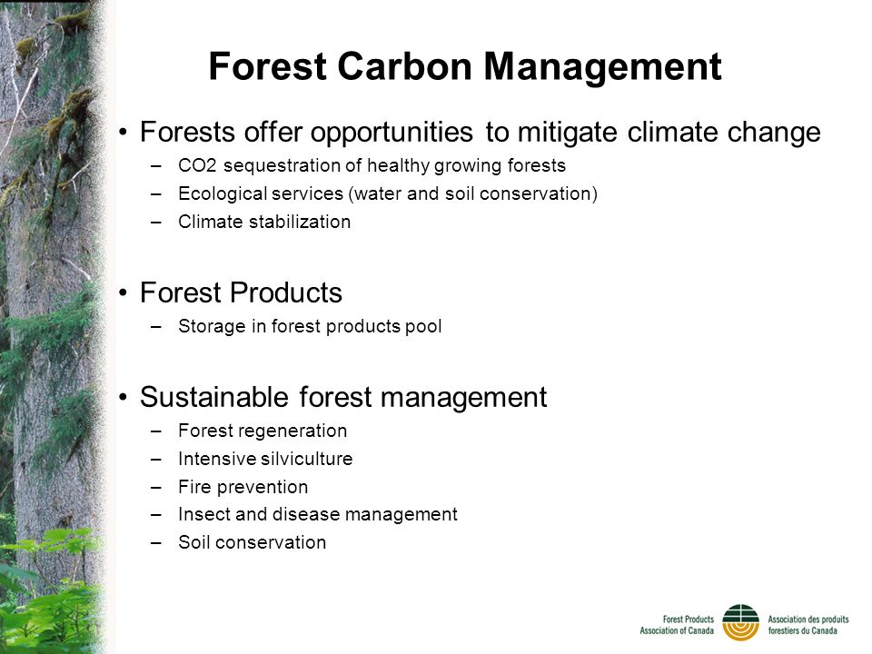 Forest Carbon Management Forests offer opportunities to mitigate climate change –CO2 sequestration of healthy growing forests –Ecological services (water and soil conservation) –Climate stabilization Forest Products –Storage in forest products pool Sustainable forest management –Forest regeneration –Intensive silviculture –Fire prevention –Insect and disease management –Soil conservation