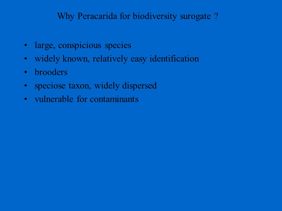 Why Peracarida for biodiversity surogate ? large, conspicious species widely known, relatively easy identification brooders speciose taxon, widely dis
