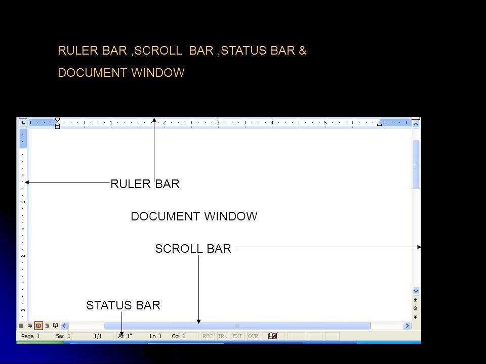 RULER BAR SCROLL BAR STATUS BAR RULER BAR,SCROLL BAR,STATUS BAR & DOCUMENT WINDOW