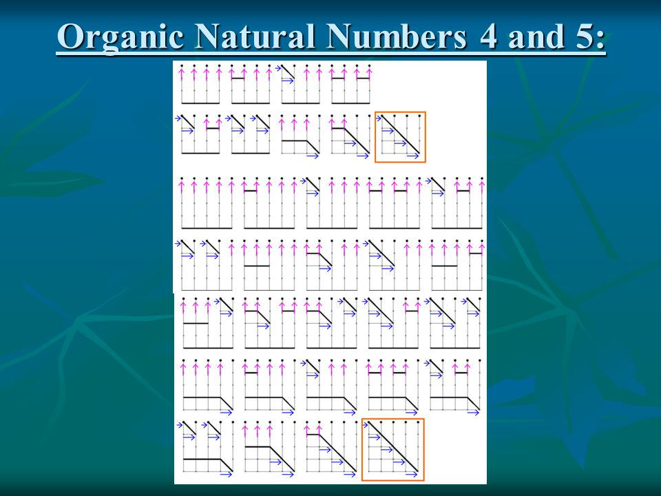 Organic Natural Numbers 4 and 5:
