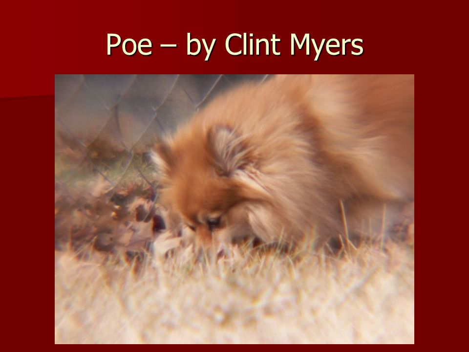 Poe – by Clint Myers