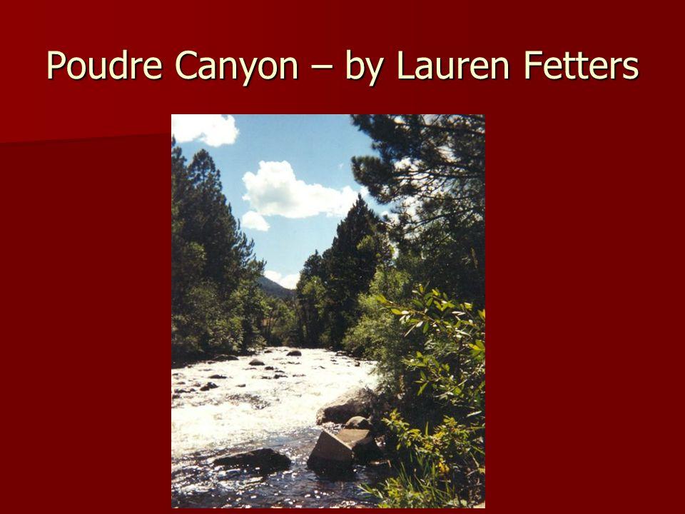 Poudre Canyon – by Lauren Fetters