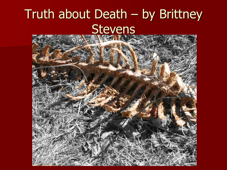 Truth about Death – by Brittney Stevens