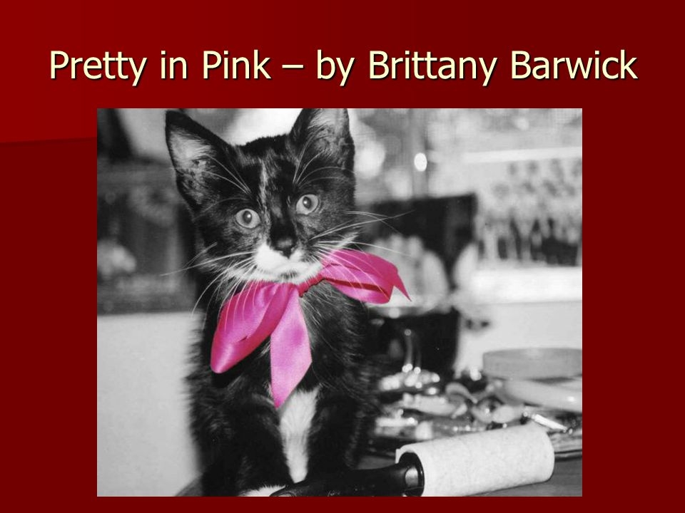 Pretty in Pink – by Brittany Barwick
