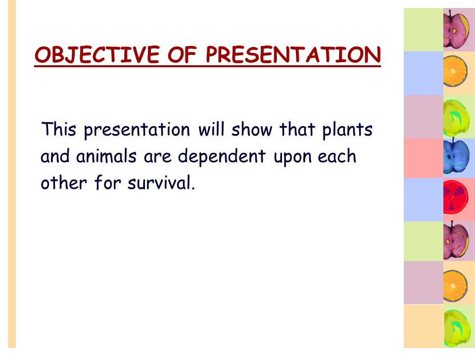 OBJECTIVE OF PRESENTATION This presentation will show that plants and animals are dependent upon each other for survival.