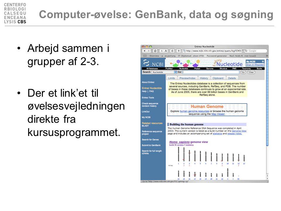 Computer-øvelse: GenBank, data og søgning Arbejd sammen i grupper af 2-3.