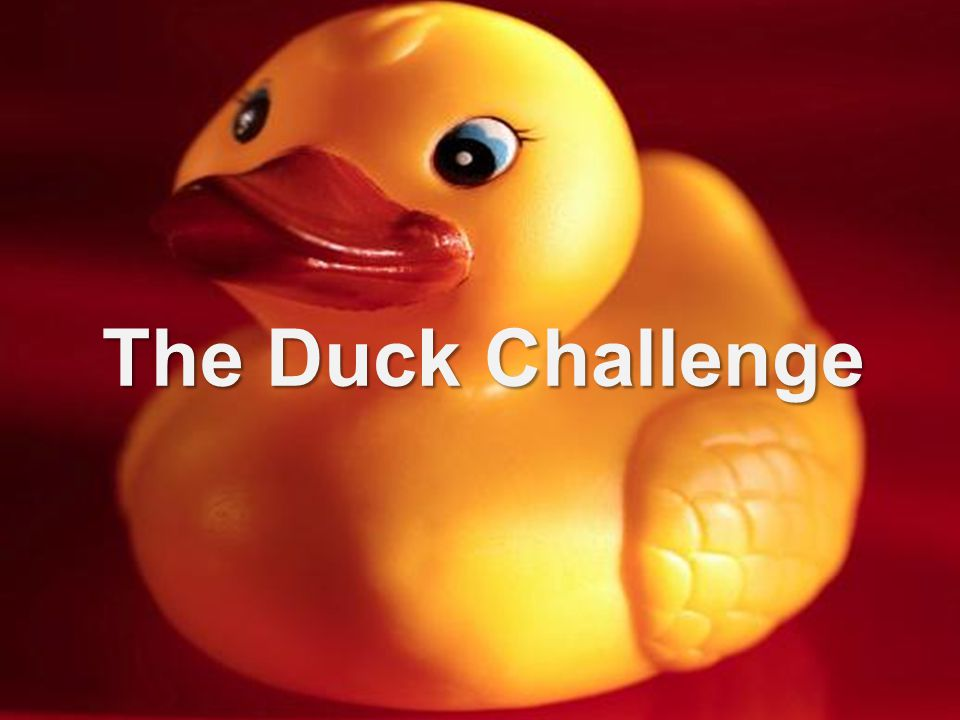 The Duck Challenge