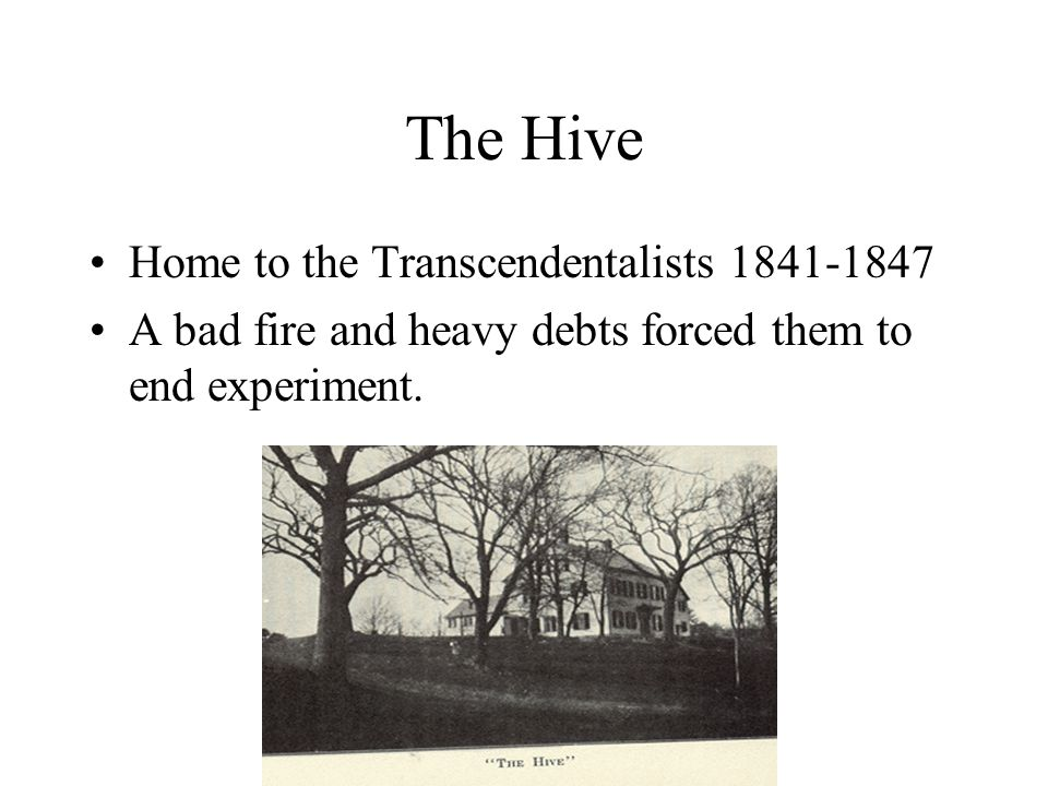 The Hive Home to the Transcendentalists 1841-1847 A bad fire and heavy debts forced them to end experiment.