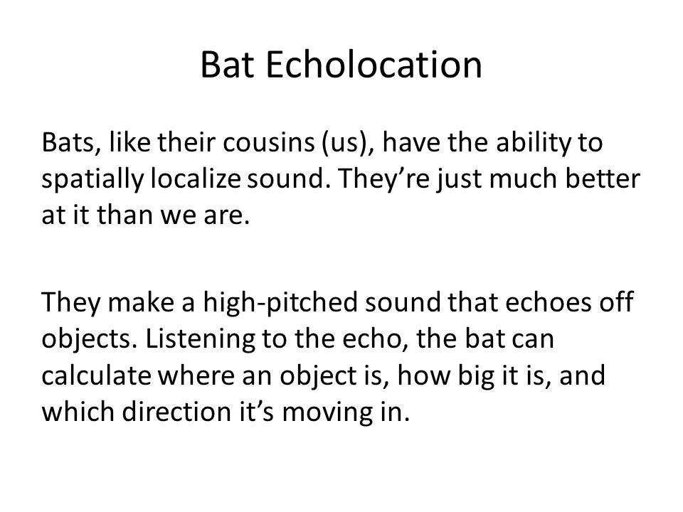 Bat Echolocation Bats, like their cousins (us), have the ability to spatially localize sound.