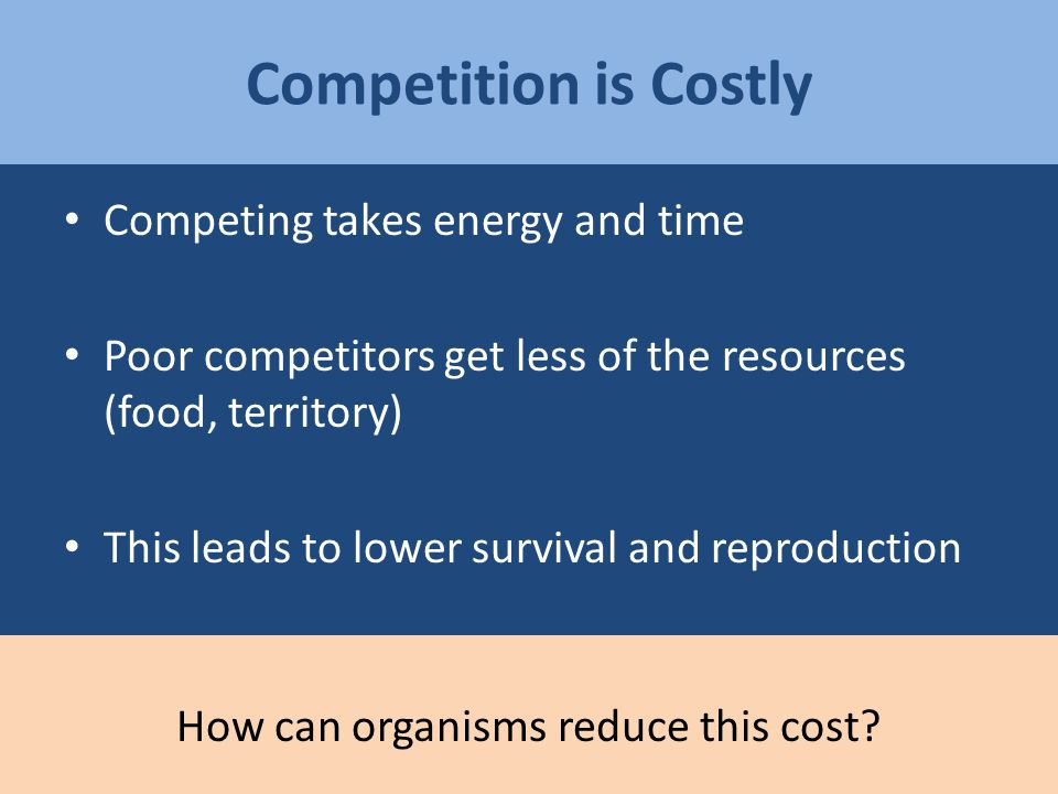 Competing takes energy and time Poor competitors get less of the resources (food, territory) This leads to lower survival and reproduction Competition