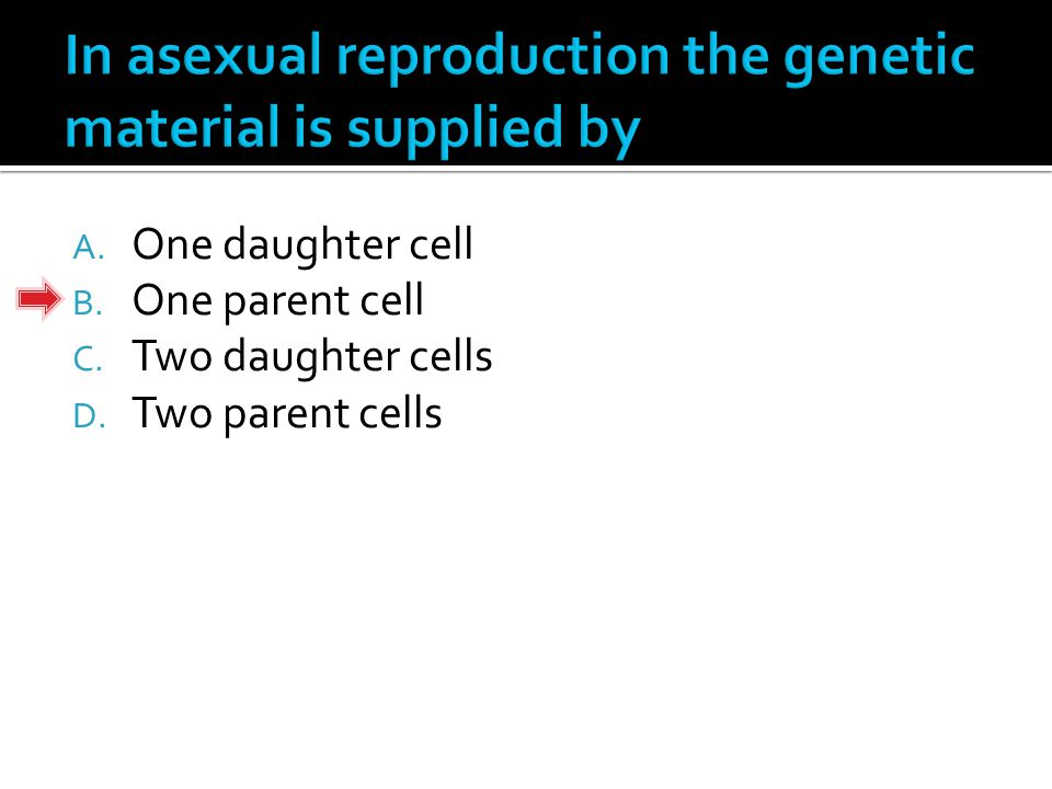 A. One daughter cell B. One parent cell C. Two daughter cells D. Two parent cells