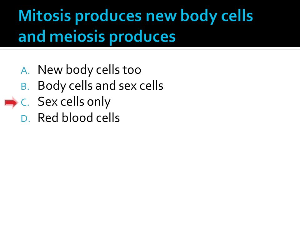 A. New body cells too B. Body cells and sex cells C. Sex cells only D. Red blood cells