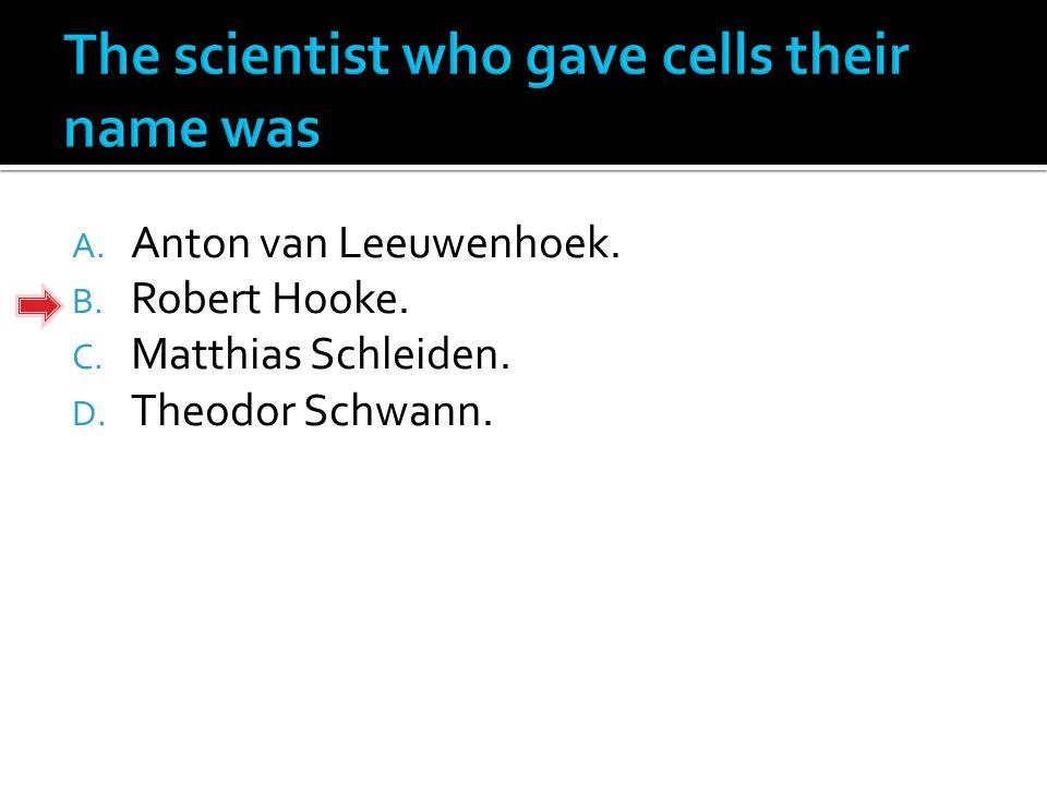 A. Anton van Leeuwenhoek. B. Robert Hooke. C. Matthias Schleiden. D. Theodor Schwann.