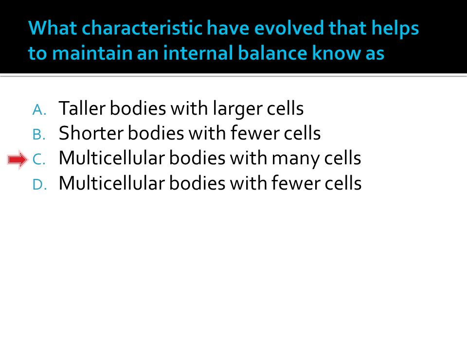A. Taller bodies with larger cells B. Shorter bodies with fewer cells C.