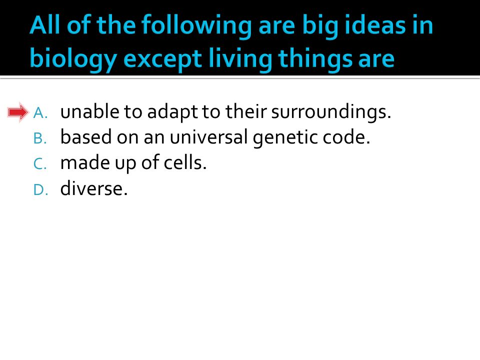 A. biogeochemical cycles. B. water cycles. C. energy pyramids. D. ecological pyramids.