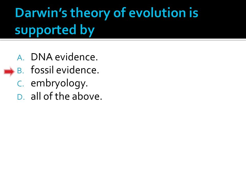 A. DNA evidence. B. fossil evidence. C. embryology. D. all of the above.