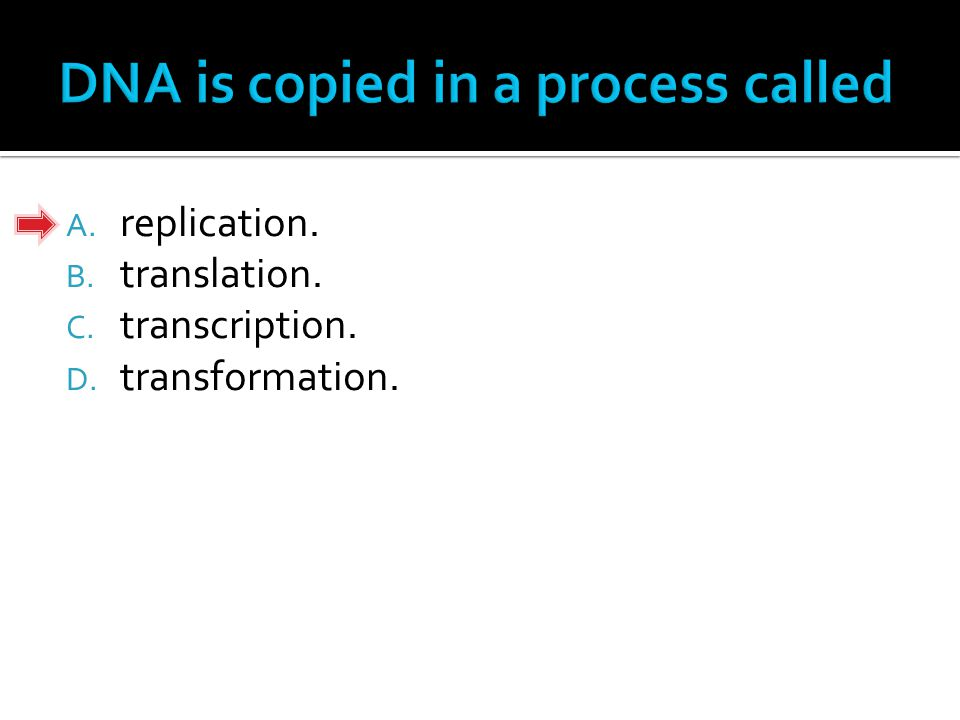 A. replication. B. translation. C. transcription. D. transformation.