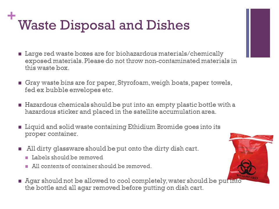 + Waste Disposal and Dishes Large red waste boxes are for biohazardous materials/chemically exposed materials.