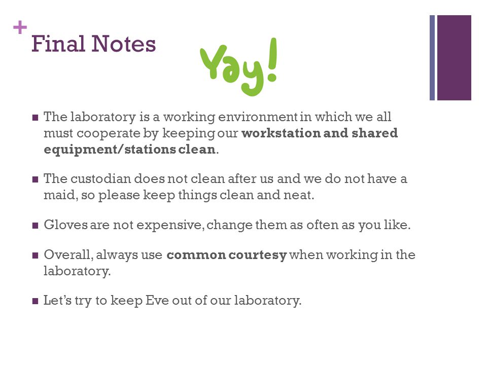 + Final Notes The laboratory is a working environment in which we all must cooperate by keeping our workstation and shared equipment/stations clean.