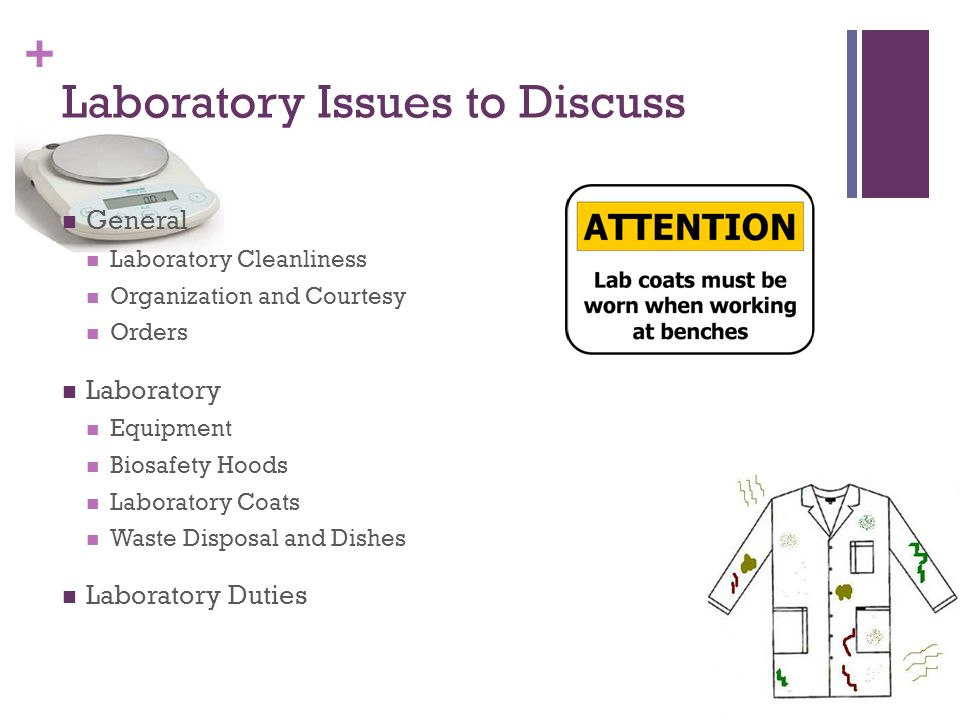 + Laboratory Issues to Discuss General Laboratory Cleanliness Organization and Courtesy Orders Laboratory Equipment Biosafety Hoods Laboratory Coats Waste Disposal and Dishes Laboratory Duties