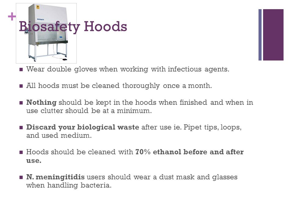+ Biosafety Hoods Wear double gloves when working with infectious agents.