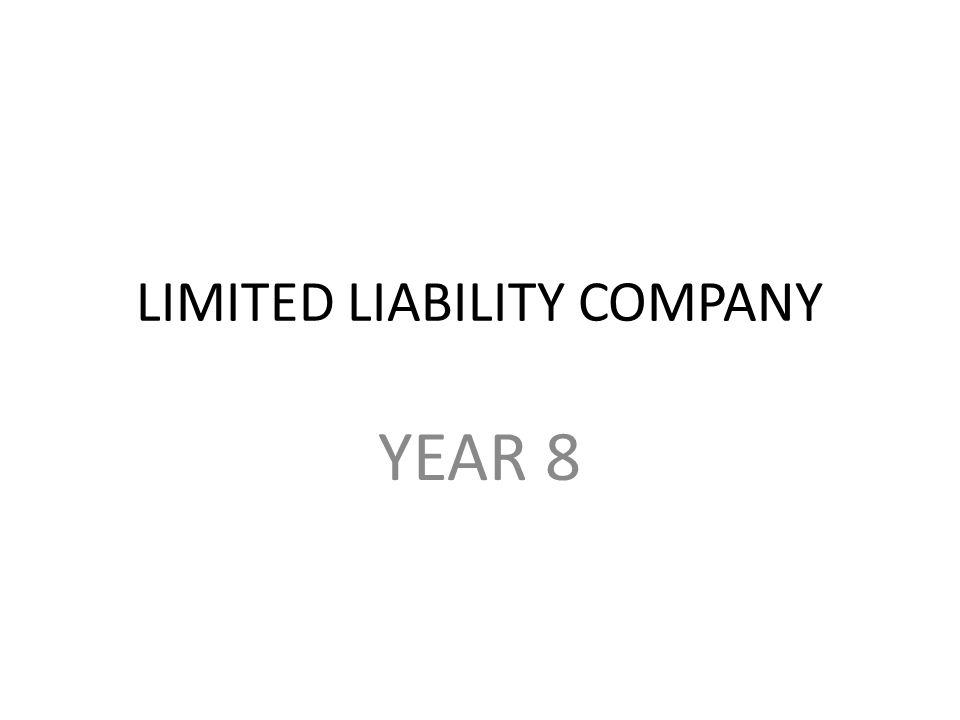 LIMITED LIABILITY COMPANY YEAR 8